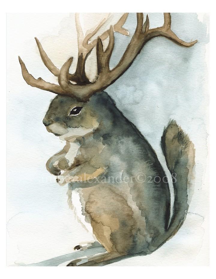 Antelopesquirell