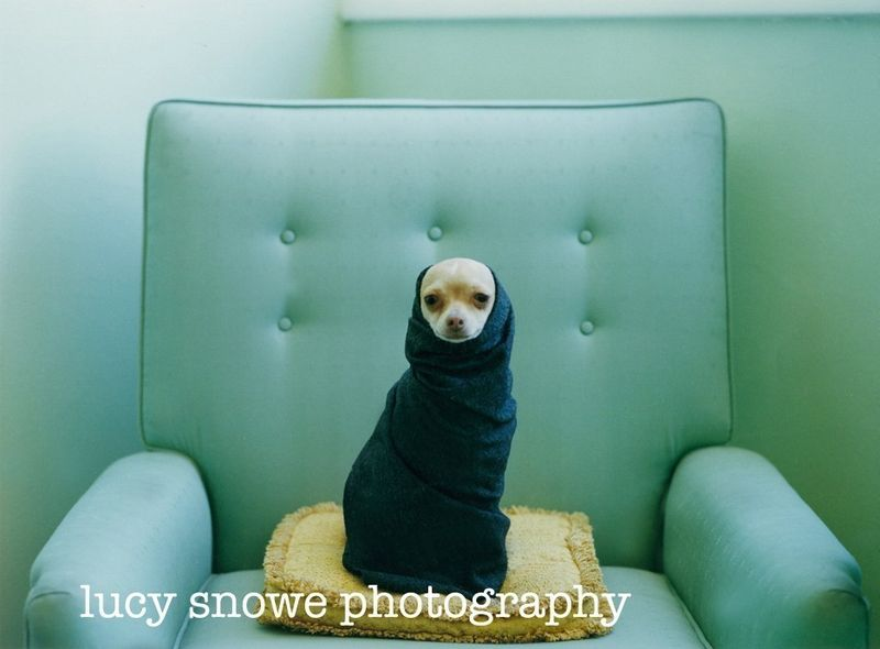 Lucy_snowe